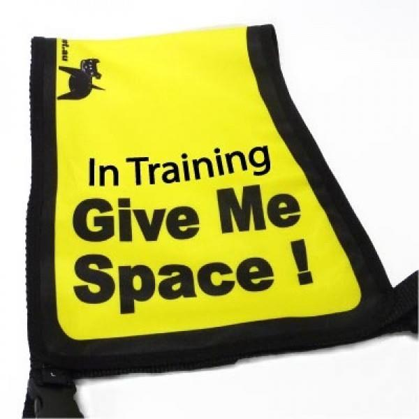 "Black Dog ""Give Me Space"" Awareness Vest for Dogs - Medium"